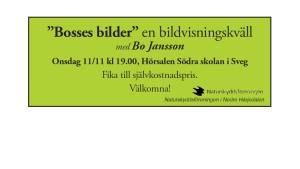 bosses_b2